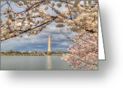 Bridge Digital Art Greeting Cards - Digital Liquid - Cherry Blossoms Washington DC 4 Greeting Card by Metro DC Photography