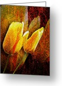Brushes Digital Art Greeting Cards - Digital Tulips Greeting Card by Svetlana Sewell