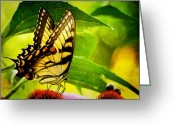 Honey Bee Greeting Cards - Dining With A Friend Greeting Card by Lois Bryan