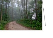 Diffused Greeting Cards - Dirt Path in Forest Woods with Mist Greeting Card by Olivier Le Queinec