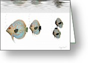 Exploration Digital Art Greeting Cards - Discus Fish Greeting Card by Corey Ford