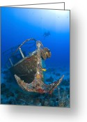 Misfortune Greeting Cards - Divers Visit The Pelicano Shipwreck Greeting Card by Karen Doody