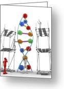 Body Image Greeting Cards - Dna Construction, Artwork Greeting Card by Pasieka