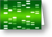 Dna Greeting Cards - DNA green Greeting Card by Michael Tompsett