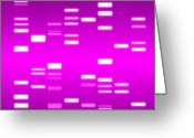 Dna Greeting Cards - DNA magenta Greeting Card by Michael Tompsett