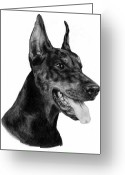 Dobermann Greeting Cards - Dobermann Greeting Card by Danguole Serstinskaja