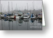 Percival Greeting Cards - Docked at Percival Landing Greeting Card by Terri Thompson