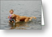 Retriever Prints Photo Greeting Cards - Dog 108 Greeting Card by Joyce StJames