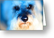 Puppies Greeting Cards - Dog 2 . Photo Artwork Greeting Card by Wingsdomain Art and Photography