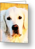 Yellow Dog Digital Art Greeting Cards - Dog Art - Golden Moments Greeting Card by Sharon Cummings