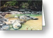 Kauai Dog Greeting Cards - Dog Gone Swimming Hole Greeting Card by Bruce Borthwick