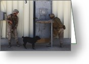 Suspicion Greeting Cards - Dog Handlers Conduct Improvised Greeting Card by Stocktrek Images