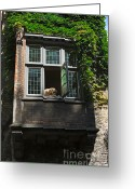 Yellow Dog Greeting Cards - Dog in a Window Above the Canal in Bruges Belgium Greeting Card by Louise Heusinkveld