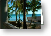Beach Scenes Greeting Cards - Dogs Beach Key West FL Greeting Card by Susanne Van Hulst