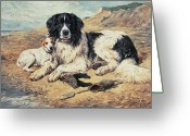 Cliff Painting Greeting Cards - Dogs Watching Bathers Greeting Card by John Emms