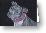 Pit Bull Greeting Cards - Dolce Greeting Card by Stacey Jasmin