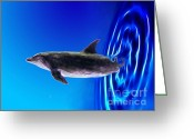 Dolphin Digital Art Greeting Cards - Dolphin Zoom Greeting Card by Methune Hively