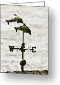 Sepia Toned Greeting Cards - Dolphins Weathervane In Sepia Greeting Card by Ben and Raisa Gertsberg