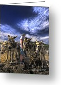 Rides Greeting Cards - Donkey Rides Greeting Card by Meirion Matthias