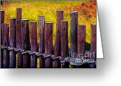 Morning Mist Images Greeting Cards - Dont Fence Me In Greeting Card by Judi Bagwell