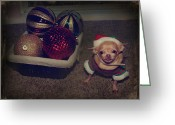 Chihuahua Greeting Cards - Dont Hang Me On Your Tree Greeting Card by Laurie Search