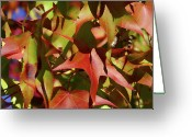 Red Leaves Greeting Cards - Dont Leave Me Alone Greeting Card by Donna Blackhall