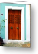 Screen Doors Greeting Cards - Door 51 Greeting Card by Perry Webster