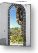 Old Abandoned House Greeting Cards - Doorway to the Desert Greeting Card by Cheryl Young
