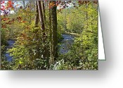 Fall Scenes Greeting Cards - Double Creek Greeting Card by Larry Bishop