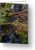 Brian Kerls Greeting Cards - Double Falls Greeting Card by Brian Kerls