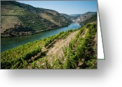 Summertime Drink Greeting Cards - Douro River Valley One Greeting Card by Josh Whalen