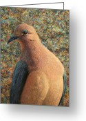 James Greeting Cards - Dove Greeting Card by James W Johnson