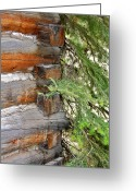Log House Greeting Cards - Dovetail Log Construction Greeting Card by Karon Melillo DeVega
