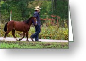 Amish Greeting Cards - Down a Country Road Greeting Card by Linda Mishler
