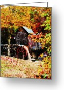 Glade Mill Greeting Cards - Down By the Old Mill Stream Greeting Card by Lianne Schneider