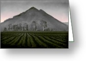 Rural Landscapes Greeting Cards - Down from the Mountain Greeting Card by Holly Kempe