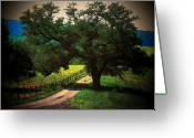 Country Lanes Photo Greeting Cards - Down the Lane Greeting Card by Joyce L Kimble