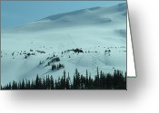 Snow Boarding Greeting Cards - Downhill Joy Greeting Card by Mark Lehar
