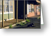 Kauai Dog Greeting Cards - Downtown Hanapepe Greeting Card by Nick Galante