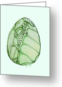 Dragons Greeting Cards - Dragon Egg Greeting Card by Nick Gustafson