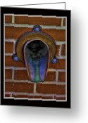 Drain Greeting Cards - Drain Greeting Card by Debbie Portwood
