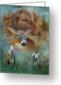 Dream Animal Greeting Cards - Dream Catcher - Spirit Of The Deer Greeting Card by Carol Cavalaris
