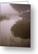 Lakescape Greeting Cards - Dream Greeting Card by Hitendra Sinkar