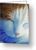 Feline Painting Greeting Cards - Dream Within A Dream Greeting Card by Brian  Commerford