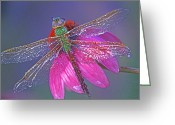 Cone Flower Greeting Cards - Dreaming Dragon Greeting Card by Bill Morgenstern