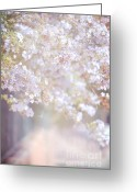 Rosy Greeting Cards - Dreaming of Spring Greeting Card by Jenny Rainbow