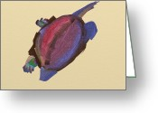 Colours Pastels Greeting Cards - Dreamlike Chines pond turtle in Art Greeting Card by Naomi Zhong