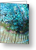 Abalone Seashell Greeting Cards - Dreams of the Sea Nourish Thee Greeting Card by Joy Gerow
