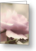 Pink Pastel Greeting Cards - Dreamy Pink Greeting Card by Julie Palencia