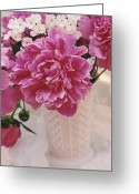 Pink Peonies Greeting Cards - Dreamy Pink Peonies in Pink Vase Greeting Card by Kathy Fornal